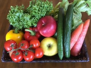 ボンシック 高原野菜